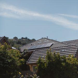 tree beside house under clear sky